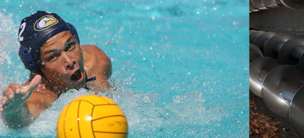A Men's Water Polo player swims for a loose ball